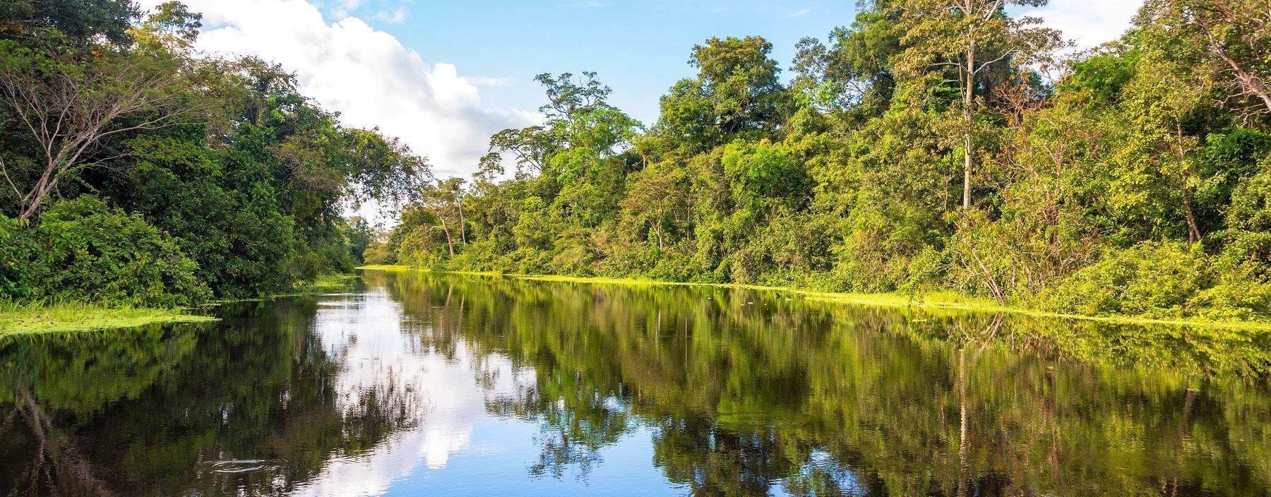 pe, iquitos, amazone regenwoud (2).jpg