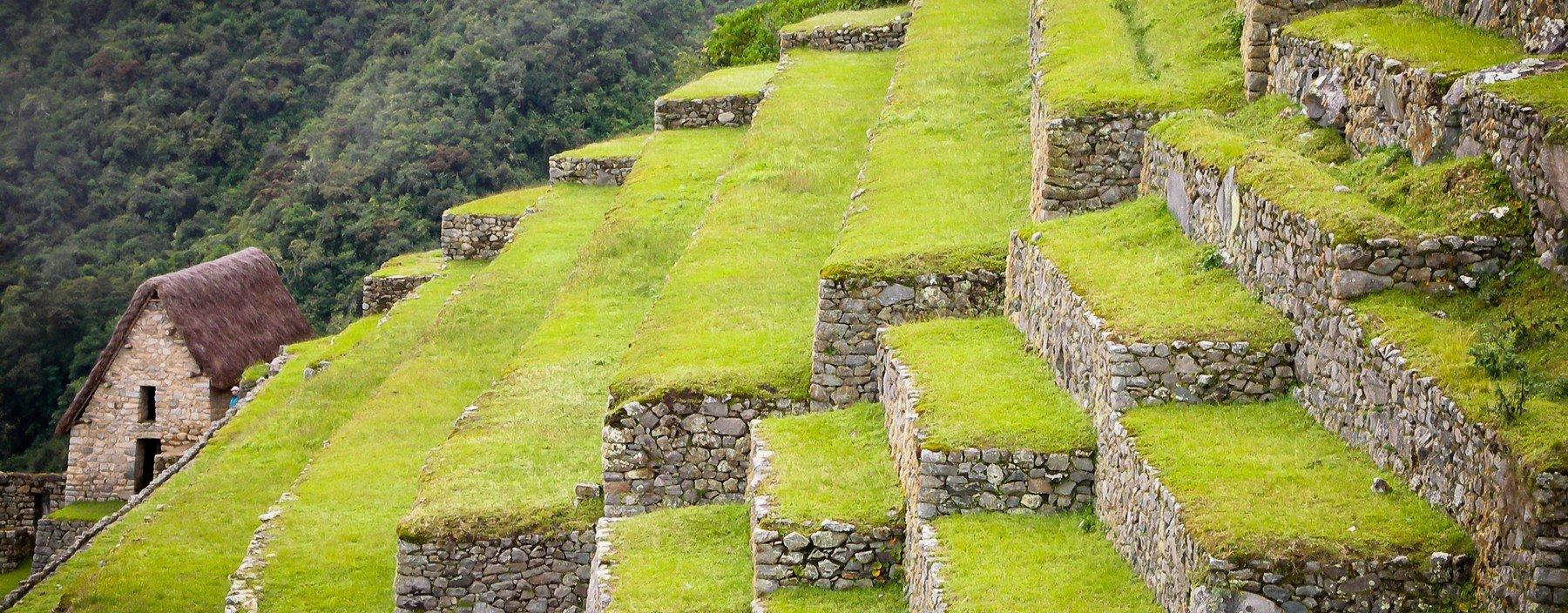 pe, machu picchu, inca trail (2).jpg