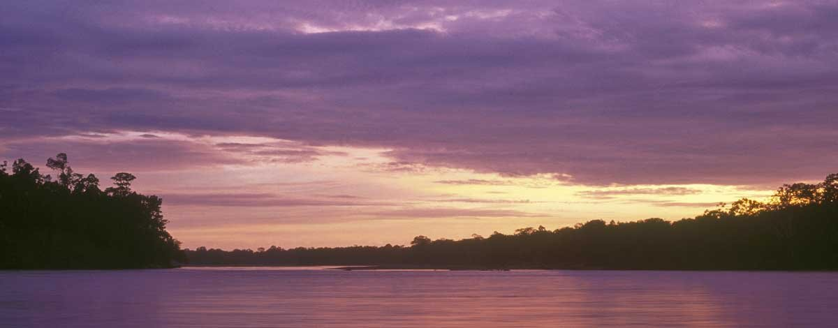 pe, puerto maldanado, amazone regenwoud (5).jpg