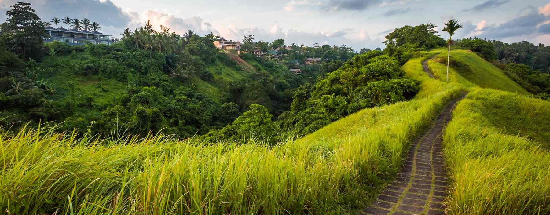 id, bali, stone road in ubud.jpg