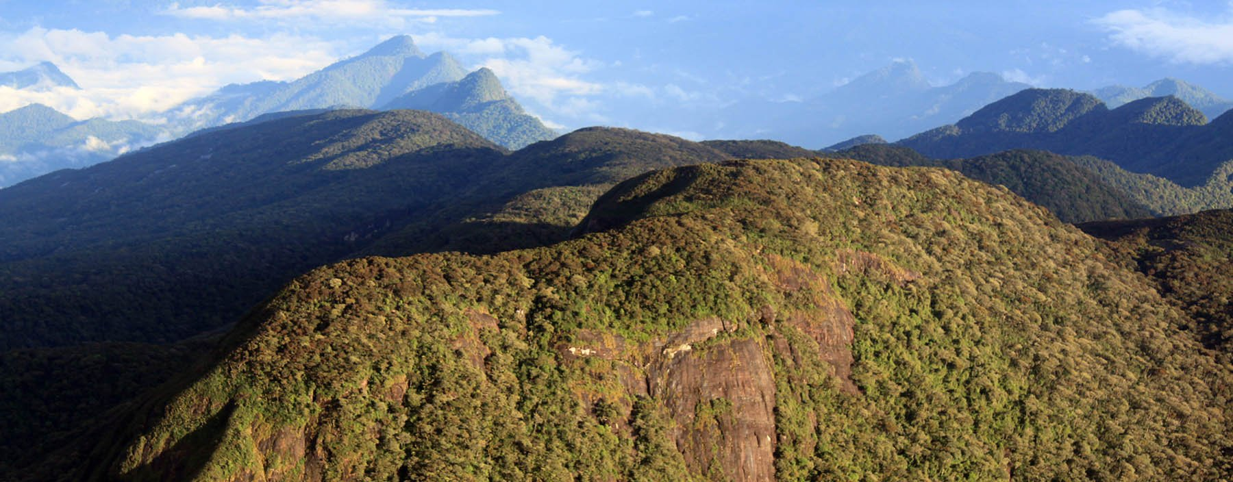 sri lanka, adam's peak, view from top.jpg