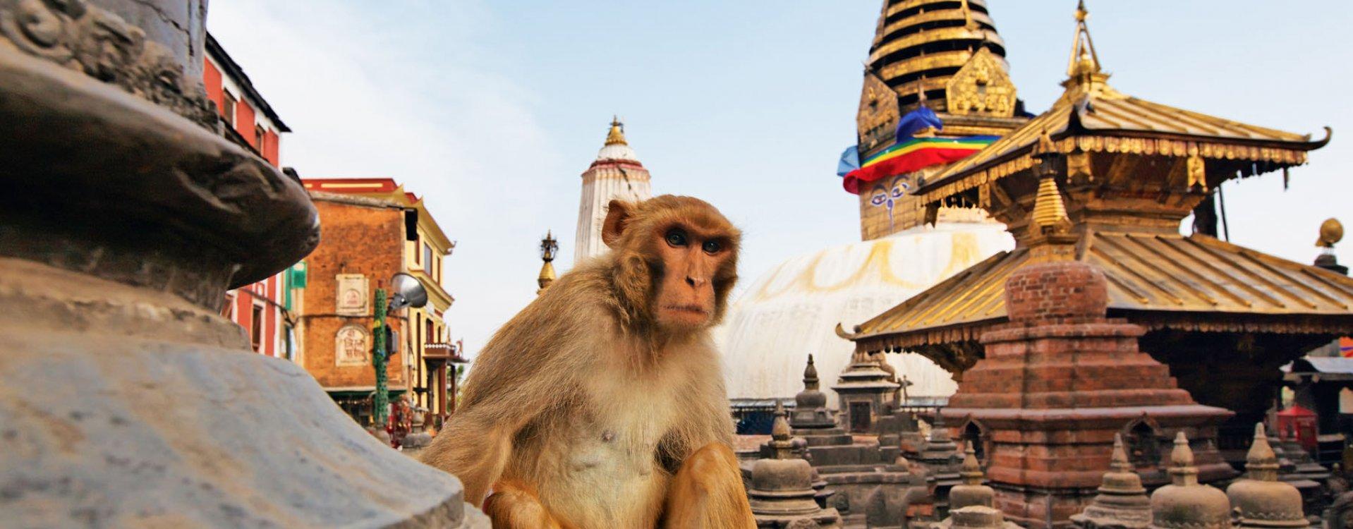 Kathmandu, Swayambunath tempel