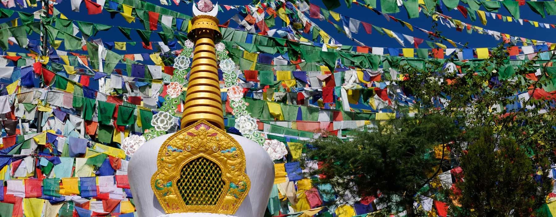in, dharamsala, mcleod ganj (2).jpg