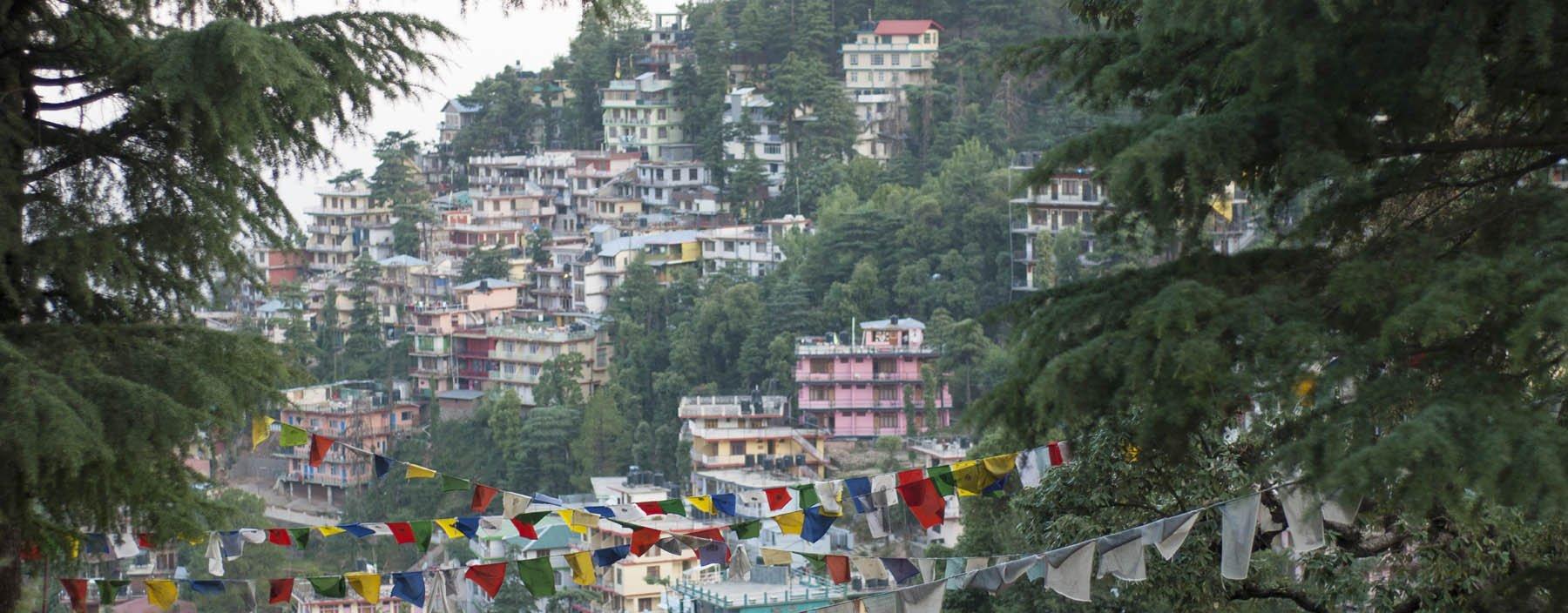 in, dharamsala, mcleod ganj.jpg