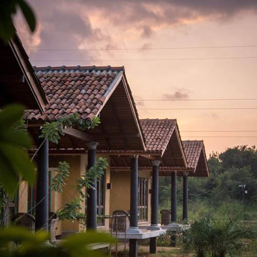 Kumbukgaha, Gouden Driehoek, Sri Lanka