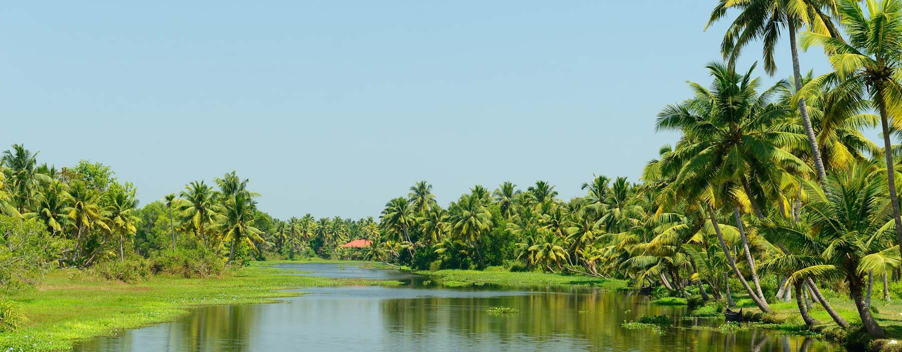 in, kerala, backwaters.jpg