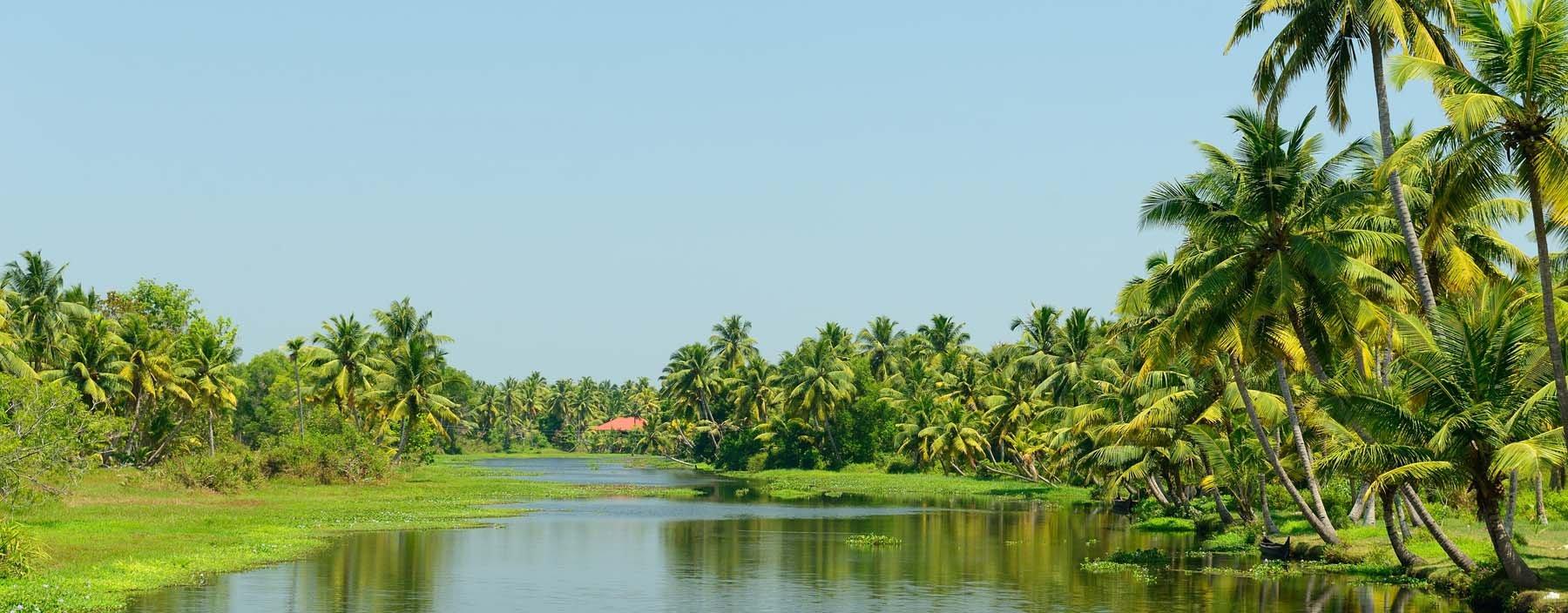 in, kerala, backwaters.jpg