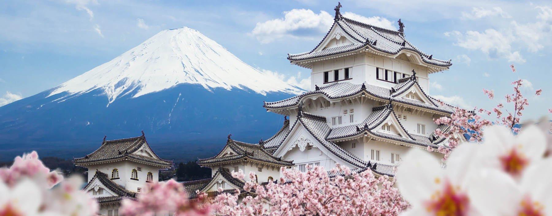 jp, himeji kasteel met mount fuji.jpg