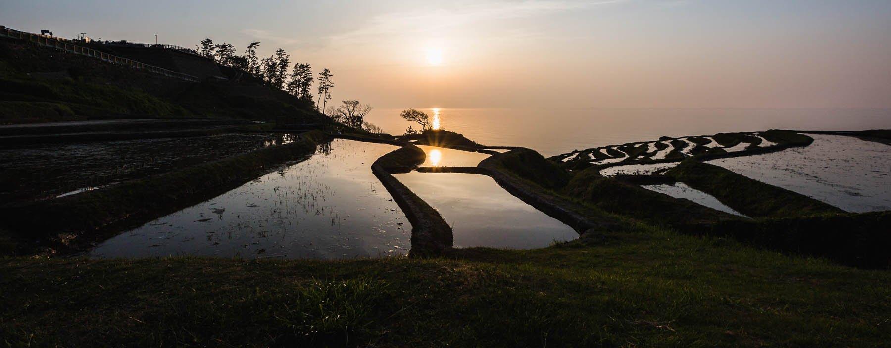 jp, noto eiland, rijstvelden (1).jpg