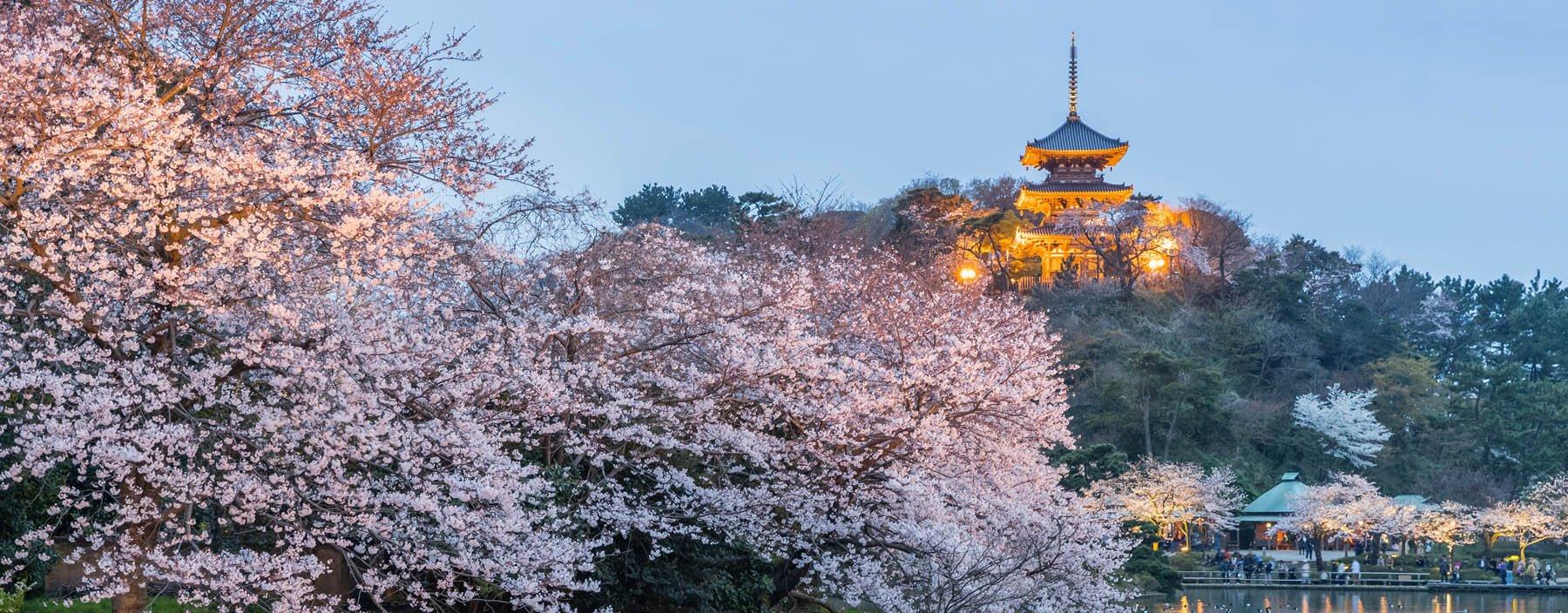 jp, yokohama, sankeien tuin (1).jpg