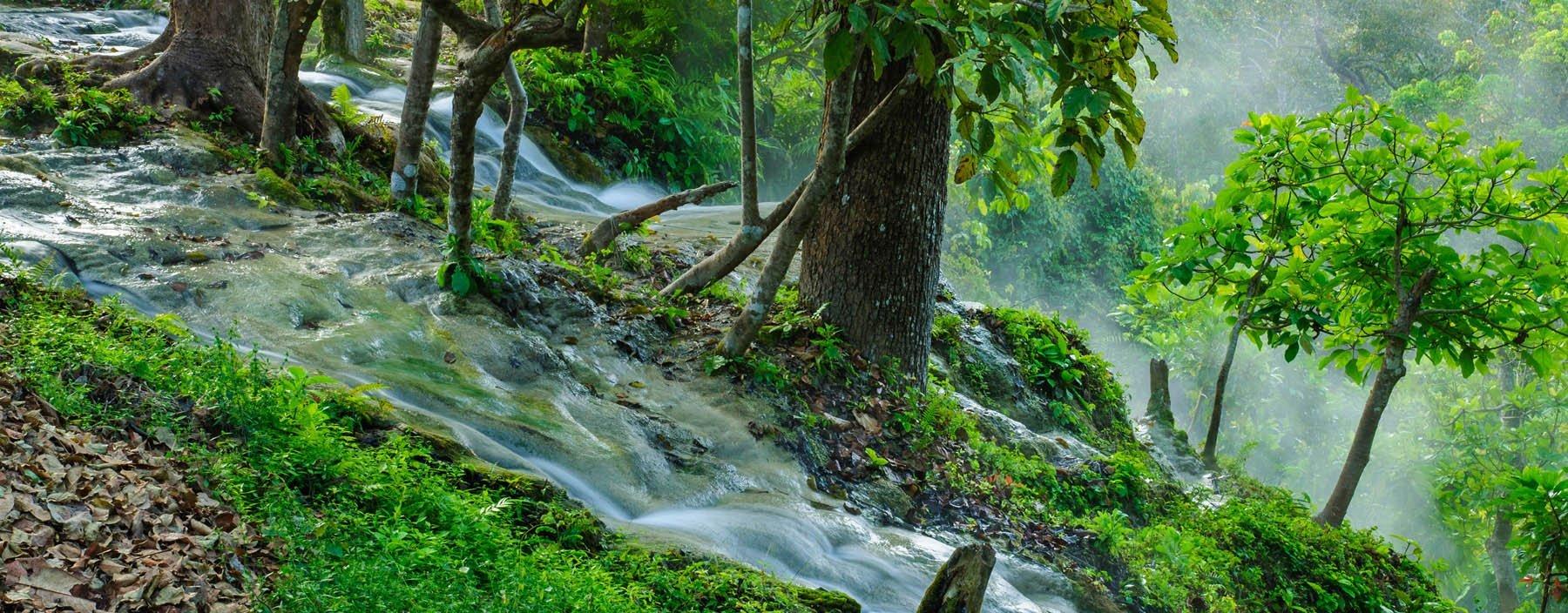 th, chiang mai, bua tong waterval (2).jpg