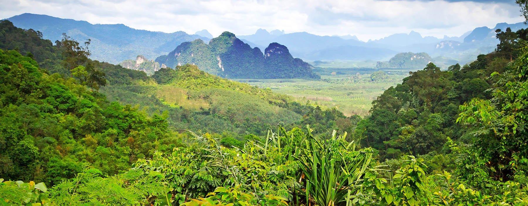 th, khao sok national park, khao sok np (3).jpg