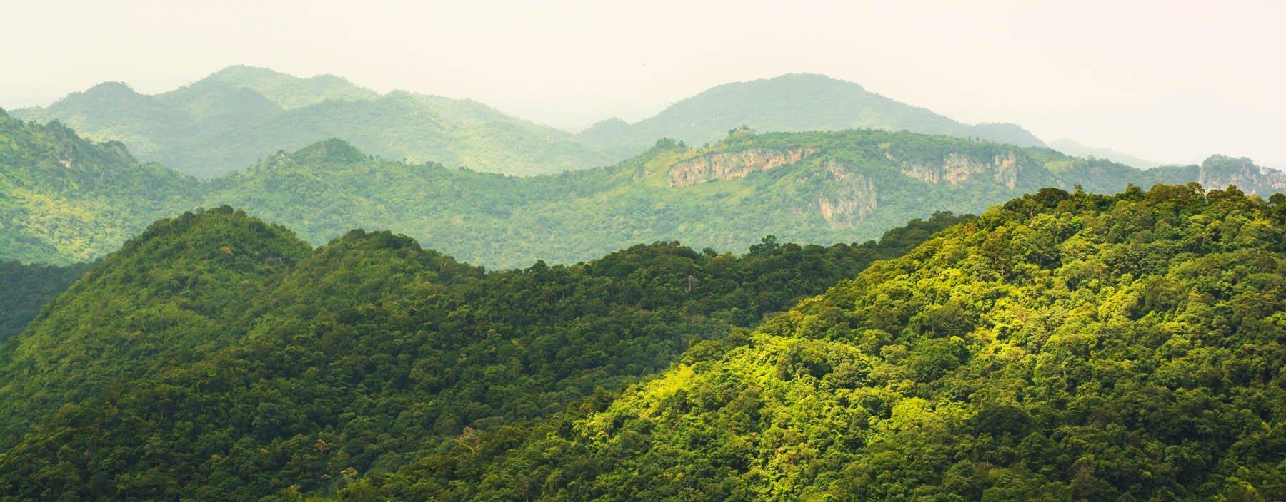 th. khao yai national park, khao yai np (6).jpg