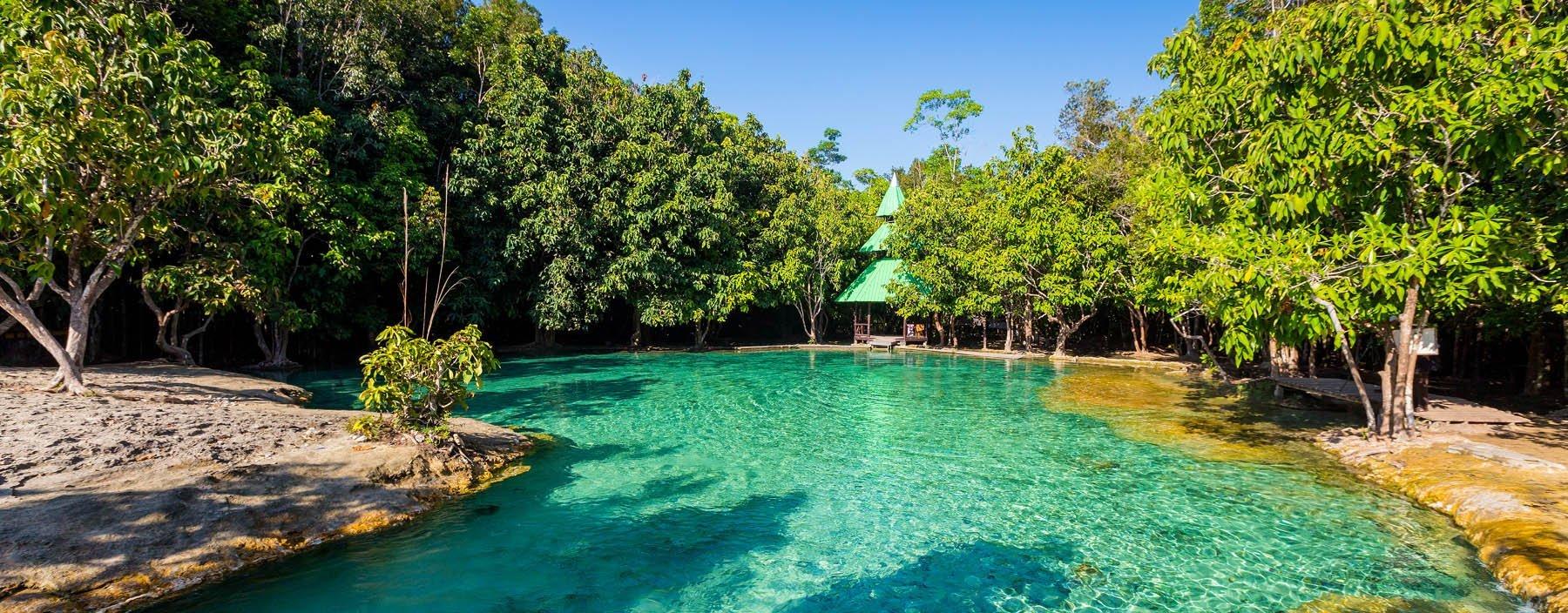 thailand, krabi, emerald pool (1).jpg