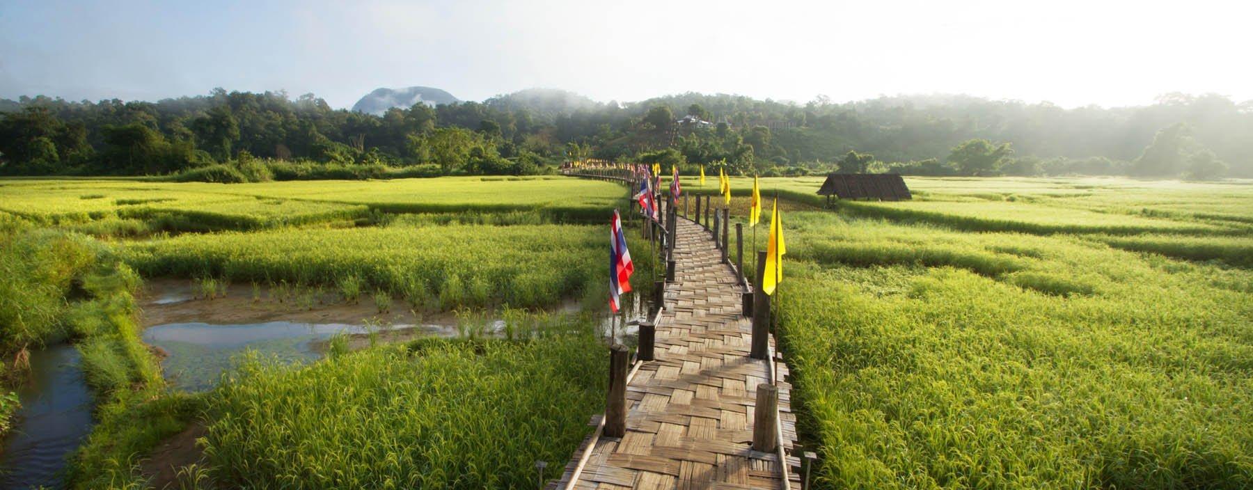 thailand, mae hong son, sutongpe bridge (1).jpg